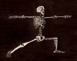 fit, yoga skeleton