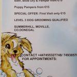 Groomingdales Dog Grooming Service